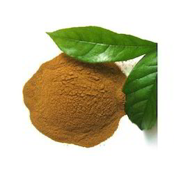 Adhatoda Extract, Pack Size: 5 Kg
