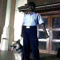 Night Watchman Security Service