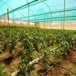 HDPE绿色阴影网,长度:50米