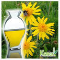 Soluble Arnica Oil