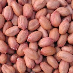 Image result for raw groundnut
