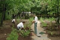 Garden Horticulture Service