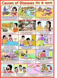 Moral Story Charts - Greedy Dog v-Charts Manufacturer from New Delhi