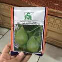 Noble Seeds Early Latto Bottle Gourd Hybrid Seed