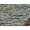 Green Bidasar Rainforest Marble