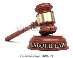 Lawyer For Labour And Services Matter
