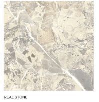 Realstone Double Charged Vitrified Tiles