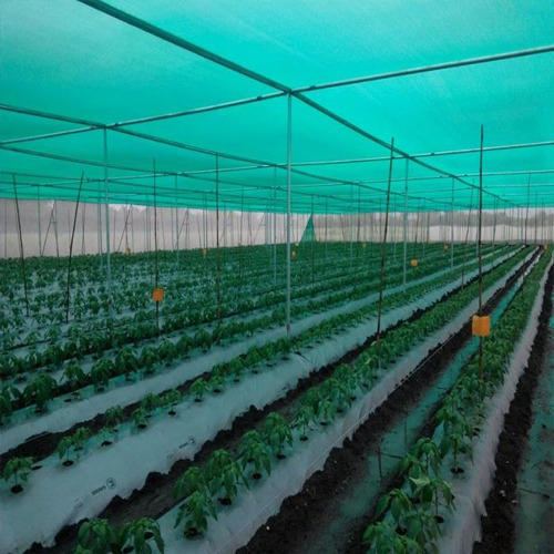Greenhouse Nursery Shade Net Rs 150