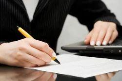 Litigation Law Services