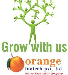 Pharma Franchise Opportunity In Punjab