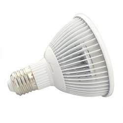 Indoor LED Bulb Light