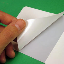 Silicone Adhesive Release Paper