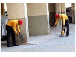Image result for termite termite service
