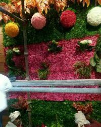 Hyperboles Artificial Vertical Wall Garden