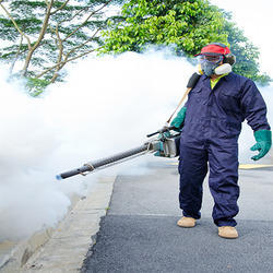 Mosquitoes Fogging Treatment Service