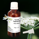 Yara Yara Oil or Yarrow Essential Oil