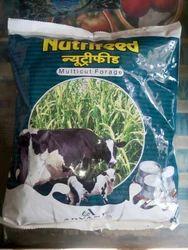 Nutrifeed Forage Seed