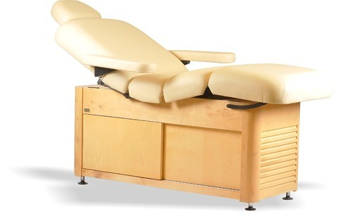 Maharaja Electric Spa Bed, स्पा बेड in Sector 11, Gurgaon , Esthetica Spa &  Salon Resources Private Limited | ID: 10944306797