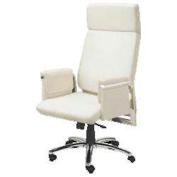 Designer Luxury Chairs