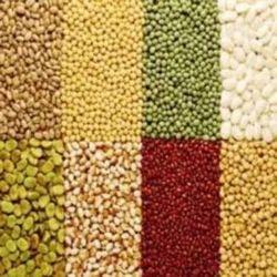 Indian Organic Food Grains, No Preservatives