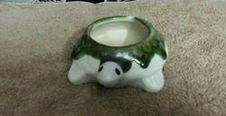 Tortise Bonsai Pots, Size: 6 Inchwhite