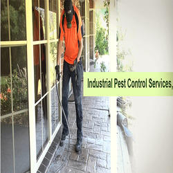Pest Control Service for Resort