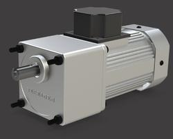 180 Watt Induction Motor With Gearbox