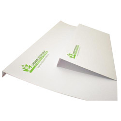 3-5 Days Paper Envelope Printing Service, in Pan India