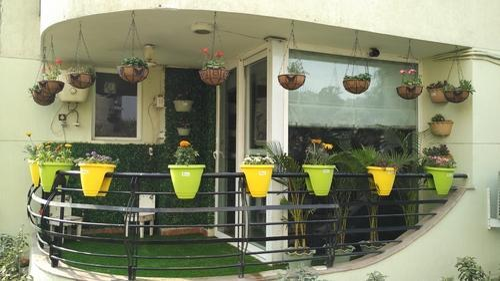 Balcony Gardening Service