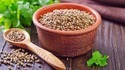 Coriander Seeds Testing Services