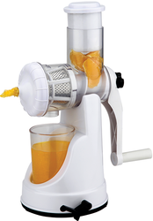 Fruit Juicer