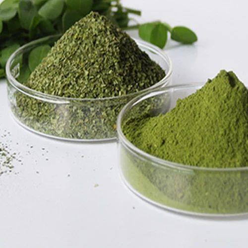 Moringa Leaves Oleifera Powder, Pack Size: 5 Kg / 10 Kg 25 Kg