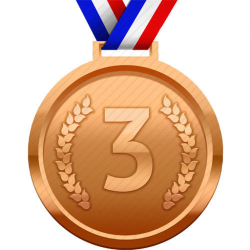 Bronze Medal at Rs 8/piece   ब्रोंज मेडल, ब्रॉन्ज़ मेडल, पीतल के पदक -  Sportline, Chennai   ID: 13111141655