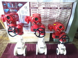 Motorized Gate Valves