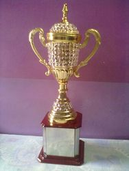 Golden Sports Cup for College