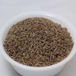 Cumin Seeds in Kochi - Latest Price & Mandi Rates from ...
