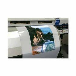 Eco Solvent Backlite Film Printing Service