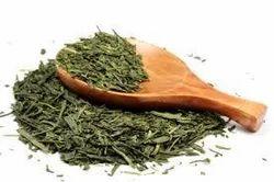 Green Tea Extract ( Camellia Sinensis)