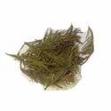 Talispatra Leaf