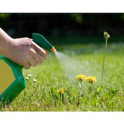 Agriculture Fertilizers - Agricultural Herbicides Manufacturer from