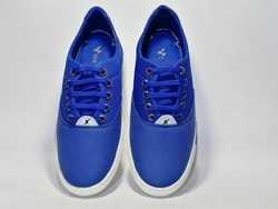 Men Blue Canvas Shoes, Size: 6-10