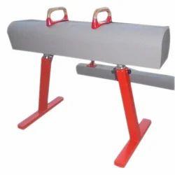 Gymnastics Pommel Horse