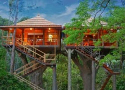 Romantic Honeymoon Tree House Tour Package In Kadavanthra