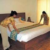 Domestic Maid And Servant Services