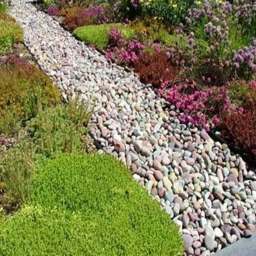 Backyard Pebbles: Garden Chip Stones