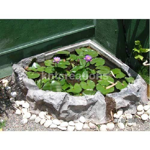 Corner Lotus Pond Exporter From Pune