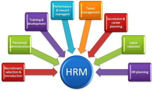 HRM And Payroll Software - Human Resource Management Software