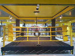 Customized Boxing Ring