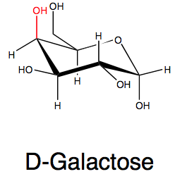 DGalactose  C6H12O6  CID 6036  structure chemical names physical and chemical properties classification patents literature biological activities safety
