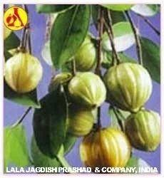 Cambodge Oils